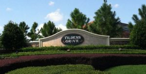Tildens Grove Gate