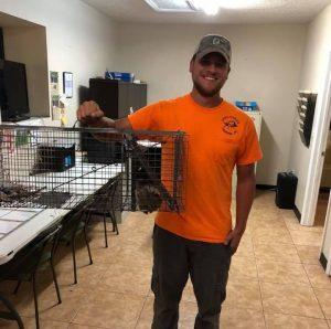 Animal Removal Contractor Orlando