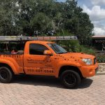 Animal Removal Services Orlando