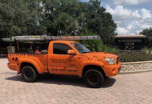 Dead Animal Removal Orlando