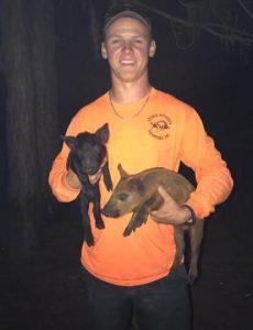 Seminole County Animal Removal