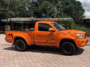 Apopka Animal Removal Contractor