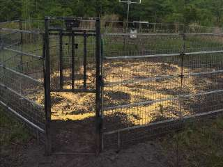 Hog Pen Ready to Trap!